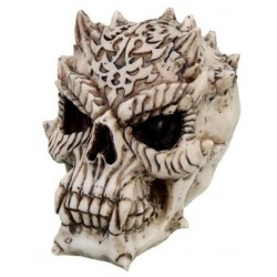 Predator Schädel