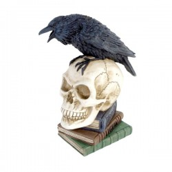 Poes Raven