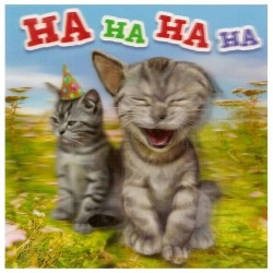 """3D Klappkarten """"Lachende Katzen"""""""