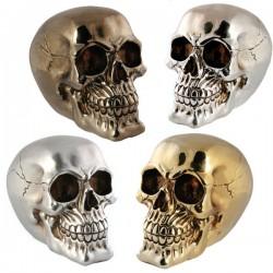 Kasse Totenkopf metallic