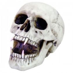 Totenkopf Vampier klein